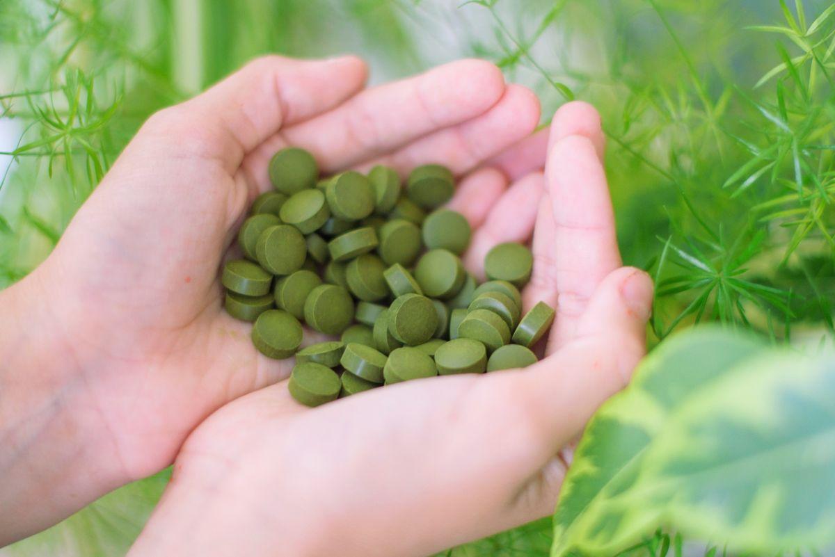 10 bienfaits de la Chlorella Pyrenoidosa
